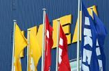 Контракт IKEA «солнечные магазины»