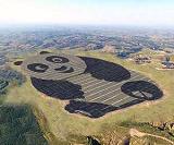 Китайскую солнечную ферму в форме гигантской панды можно будет увидеть из космоса