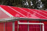 Солнечные теплицы производят и овощи, и электричество