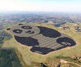Уже к 2023 году Китай станет мировым лидером в сфере потребления энергии из возобновляемых источников
