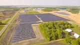 «Солнечный» урожай – новая «товарная культура» для фермеров США